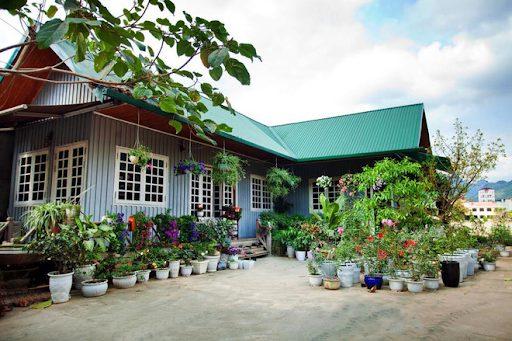 Mái nhà lợp màu xanh lá mang lại không gian tươi mới khi kết hợp với hệ thống cây cảnh, chậu hoa trước nhà