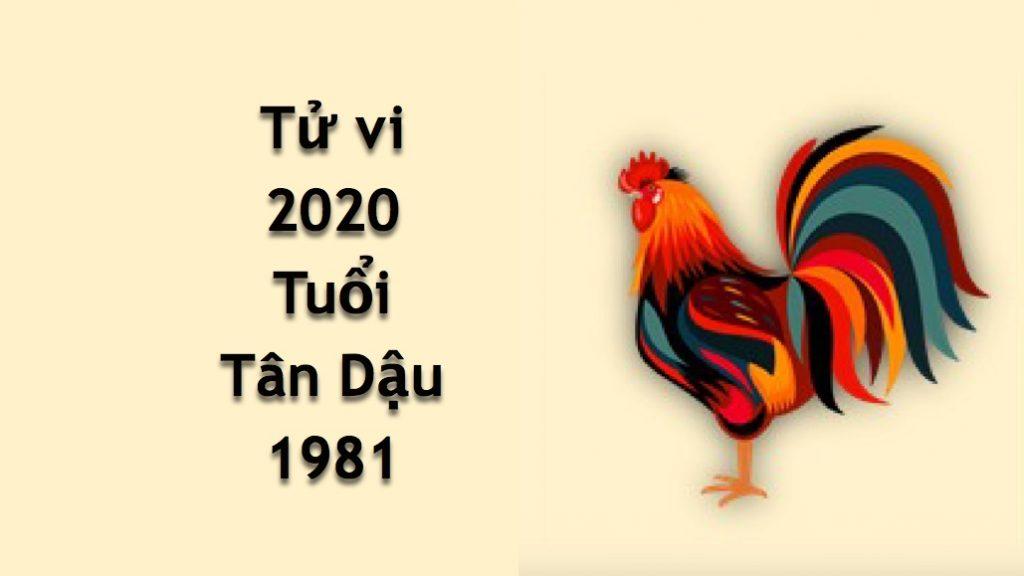 tu-vi-tuoi-tan-dau