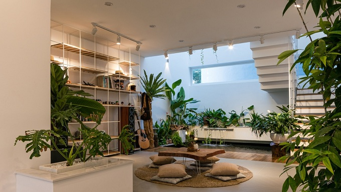 thiết kế nhà có nhiều cây xanh